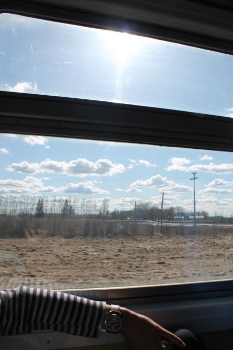 Uitzicht vanuit de sneltrein Tallinn-Tartu