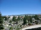 Deze dus: gigantische begraafplaats